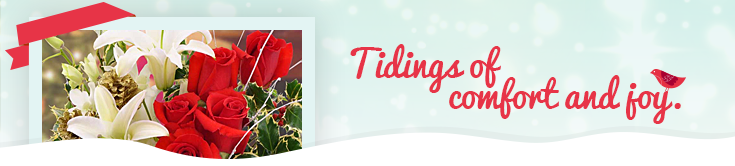 Christmas Flowers, Plants & Gifts