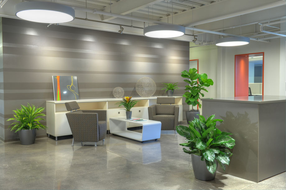 Plantscapes for the Office by Eatern Floral, Grand Rapids, MI
